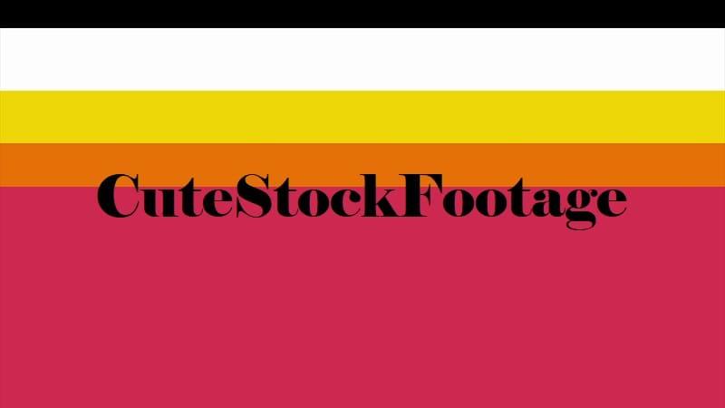 CuteStockFootage