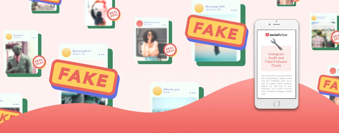fake followers audit