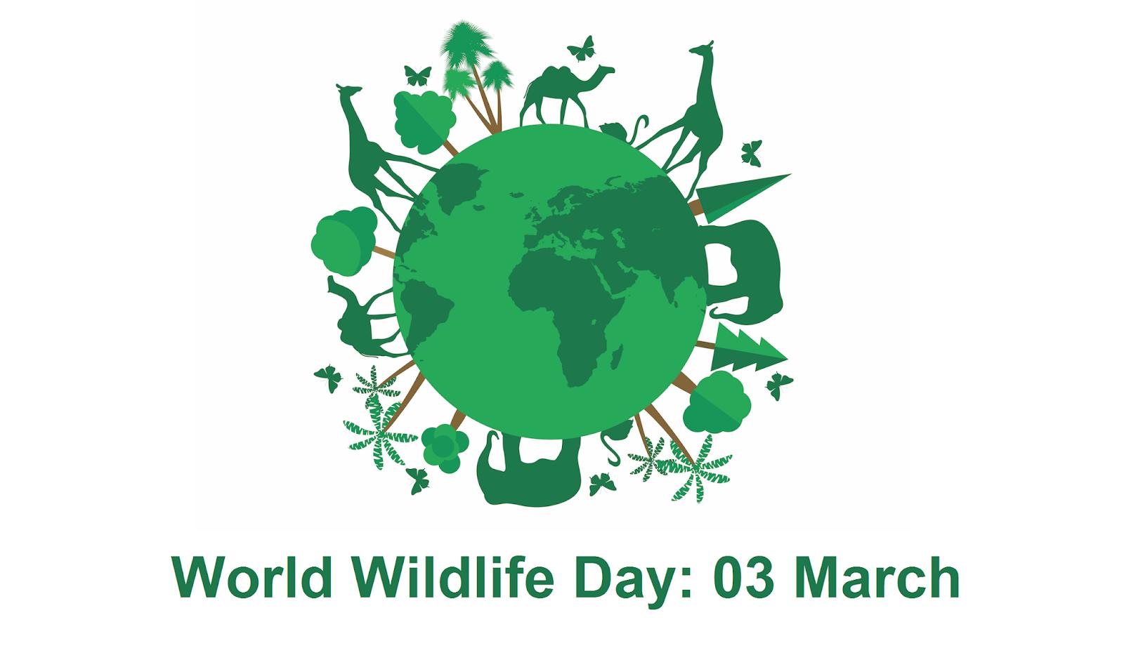 3rd March - World Wildlife Day: Social Media Holidays